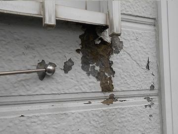 外壁:カチオン補修前